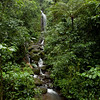 "<a href=""http://www.hangingbridges.com/"">Arenal Hanging Bridges</a>."