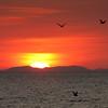 Sunset at Tarcoles.