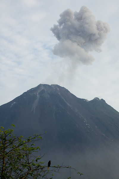 Arenal Volcano Eruption