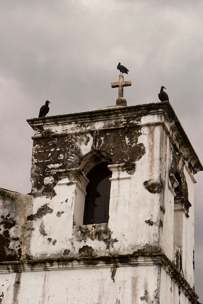 Three vultures sitting on an old church tower with peeling paint and a dark, ominous cloudy sky in the background give a foreboding sense. This image is almost in black and white.