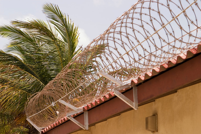 Coils of barbed wire around the top of a building, with palm trees nearby, signals trouble in paradise.
