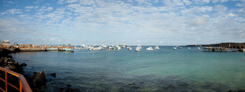 A panorama view of Puerto Baquerizo Moreno Harbor on San Cristobal Island in the Galapagos Islands of Ecuador. The port is filled with boats waiting to take visitors on tours of the islands.