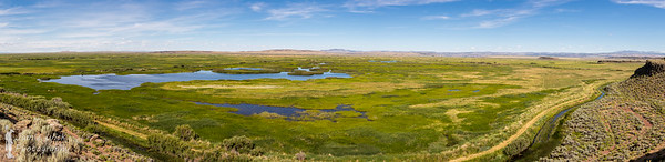 Buena Vista Ponds
