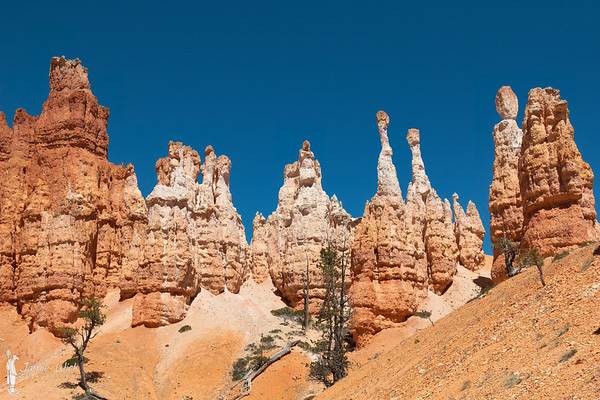 Hoodoos on the Peekaboo Trail in Bryce Canyon National Park