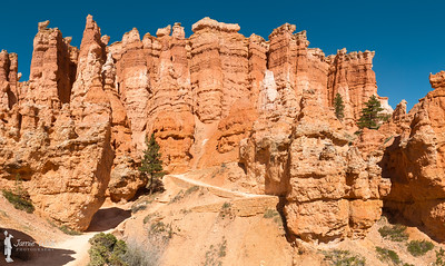 Hoodoos on the Queens Garden Trail - Bryce Canyon National Park