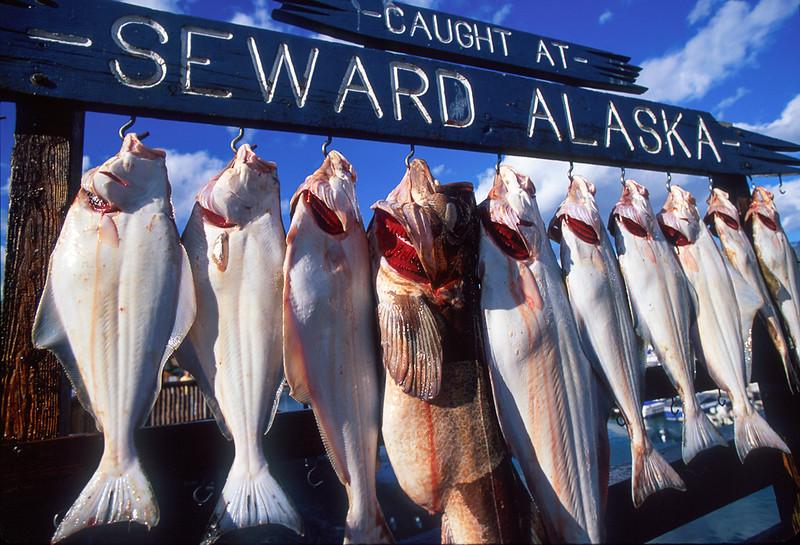 Alaska_171_Seward