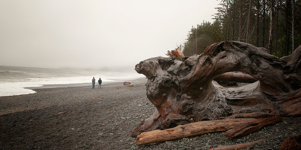 Ruby Beach, Olympic NP. (Washington)