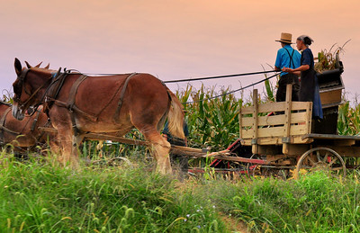 Amish Country Pa