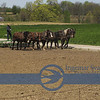 Amish farms soon seen on Route 603..great day for working outside.