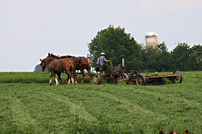 Amish in Lancaster, PA