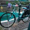 Love this bike. Plants need to be watered every day...