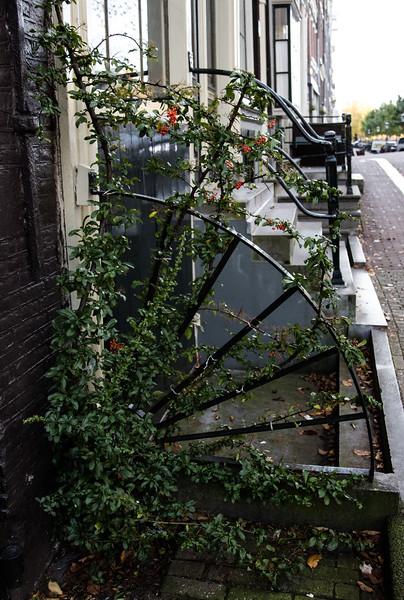 Amsterdam-0695