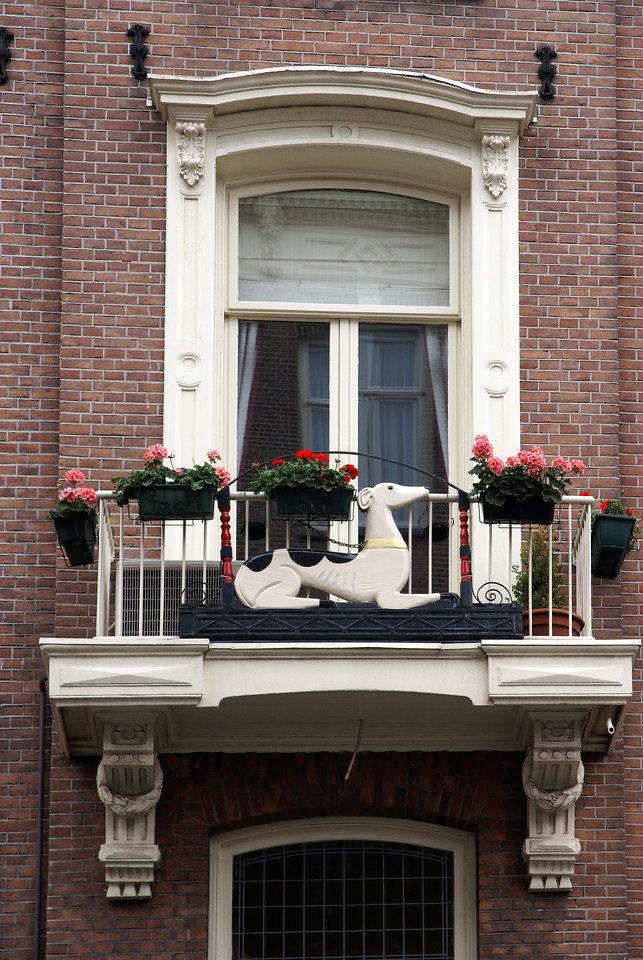 Window with flower boxes, deer.