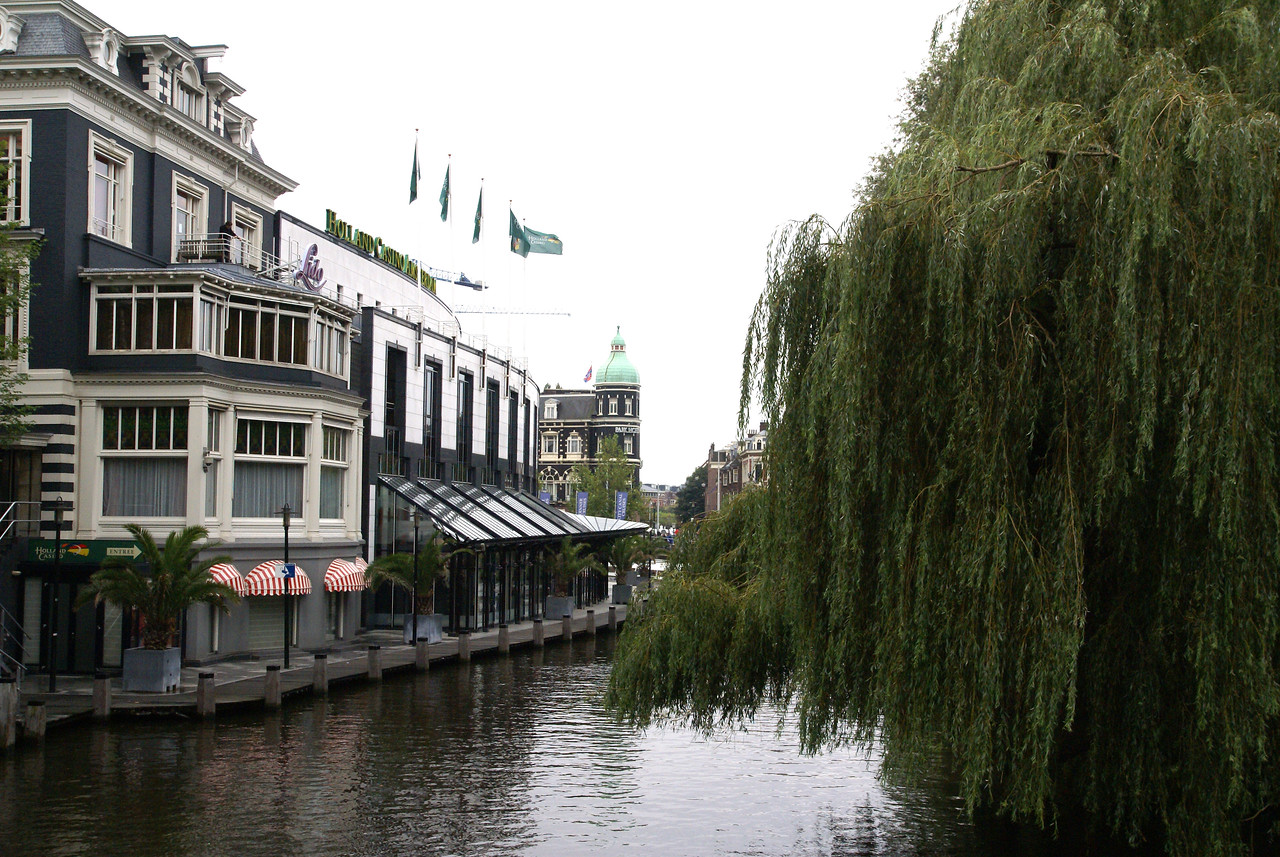 Canal with big tree.