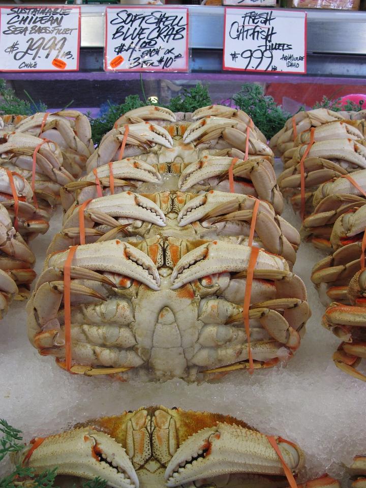 or Crab?