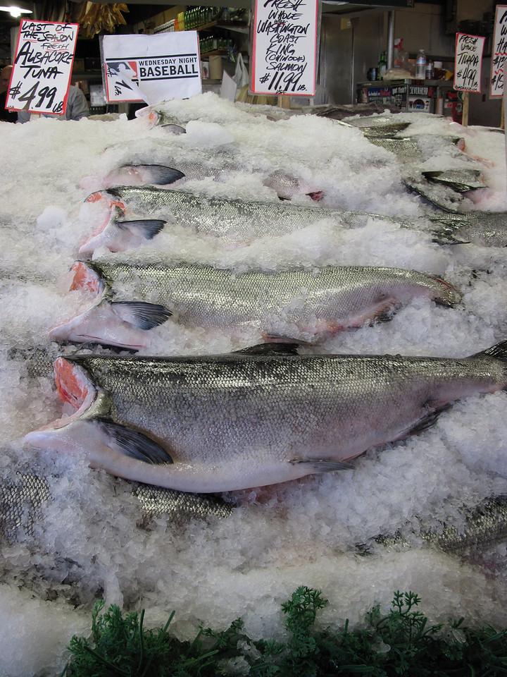 Need a fish?