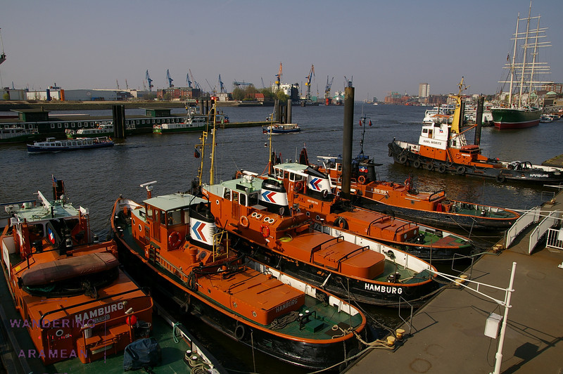 Tugboats in the Hamburg harbor