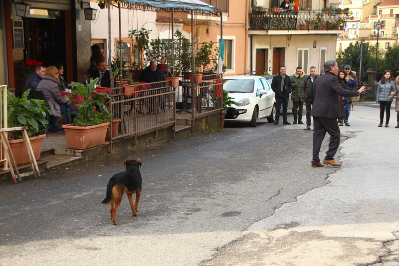 Monterosso039.jpg