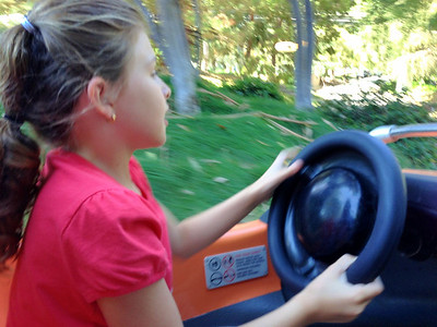 Watch out!  Crazy driver behind the wheel!