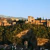 The Alhambra - Granada