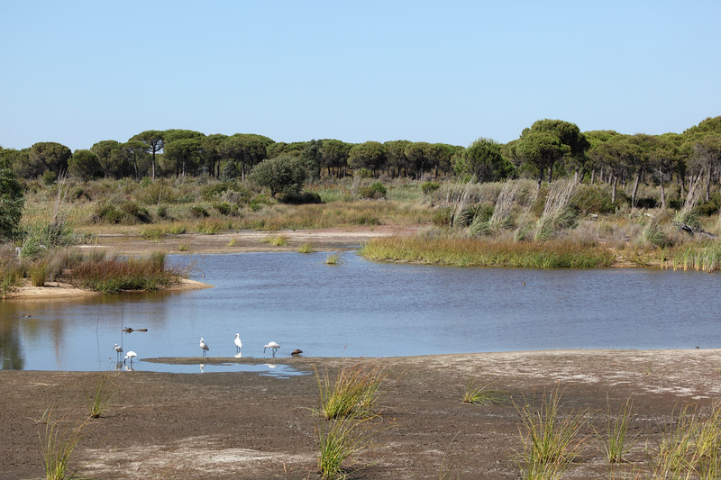 Où aller en Andalousie - province de Huelva