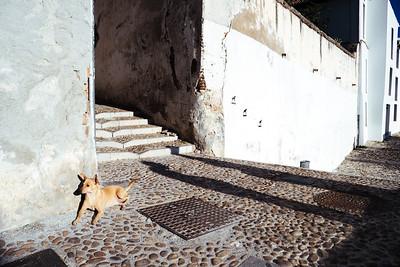 Granada - Albaycin (shadow)