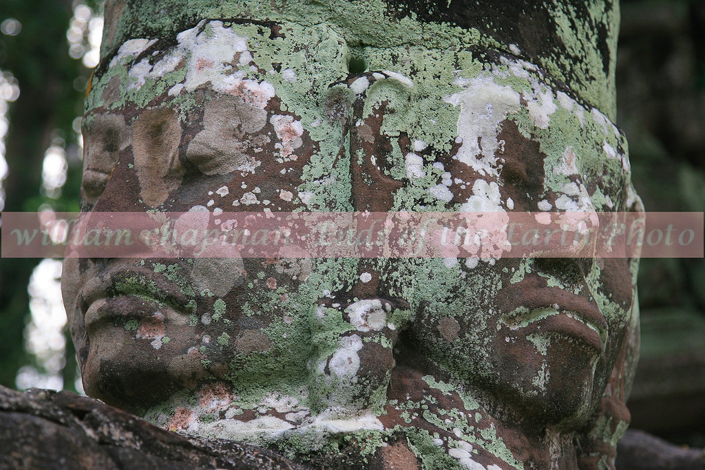 Stone Face of the Bayon