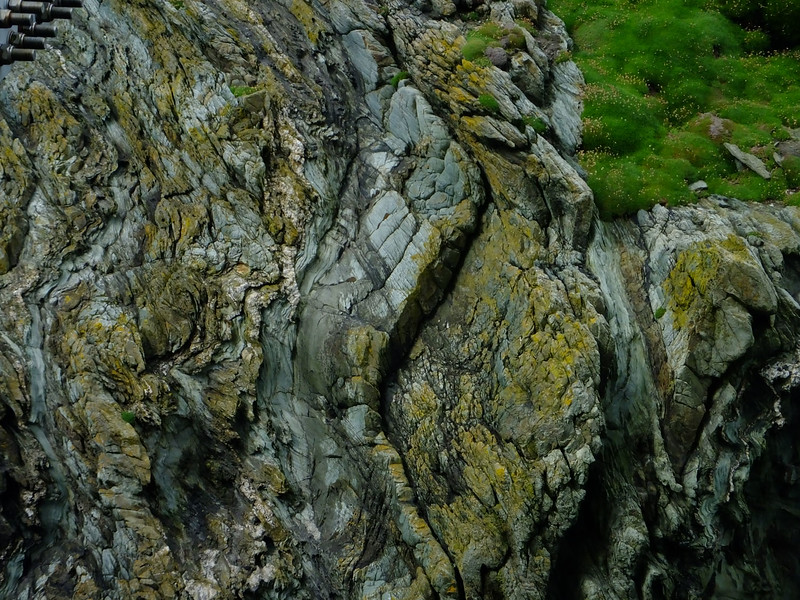 Cambrian schist at South Stack