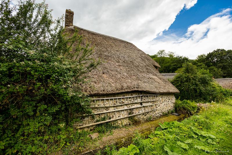 Cottage Anglais à Branscombe