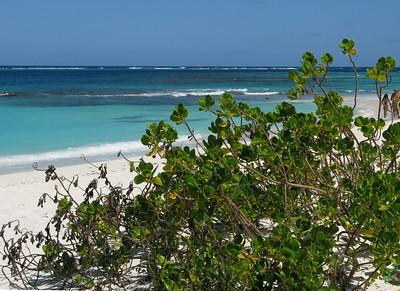 Shoal Bay Beach, Anguilla