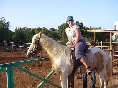 watercolers- crankly ol'horsey