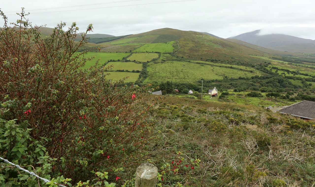 Beautiful countryside on the way to Tralee & Lispole