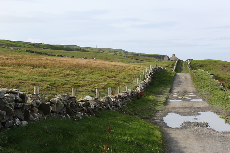 Country Road - take me to the Cliffs of Moher