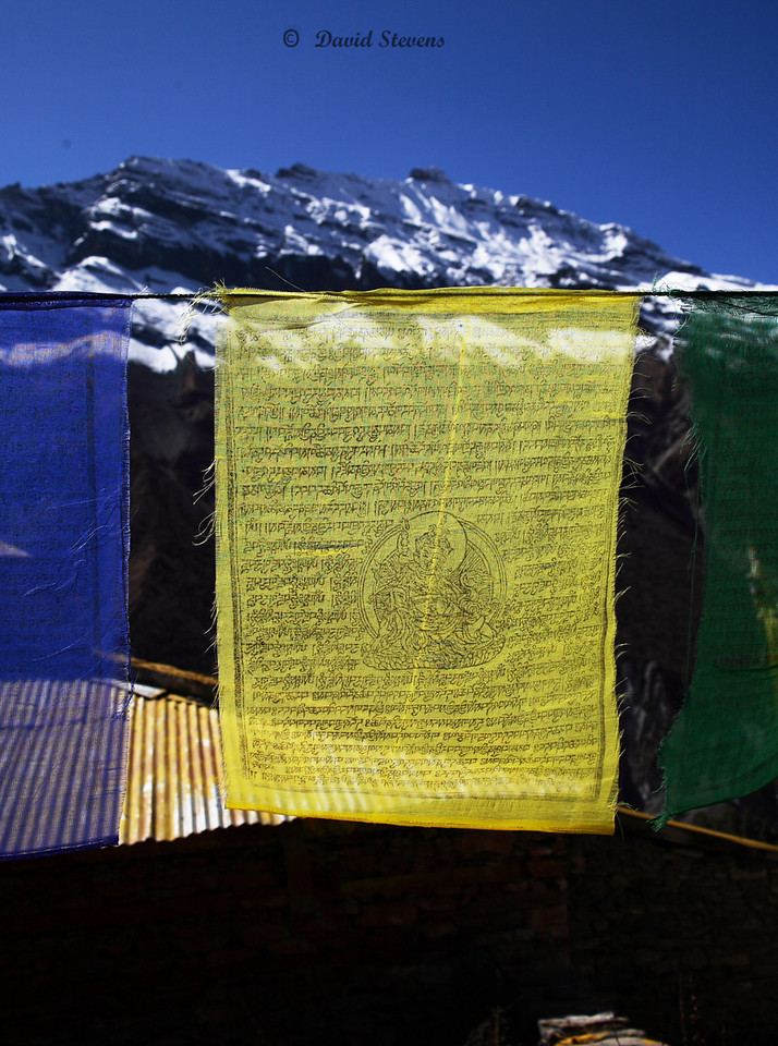 21A close up prayer flag