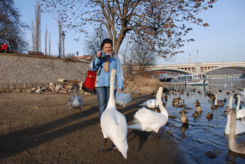 Anna and Swans in Prague 6