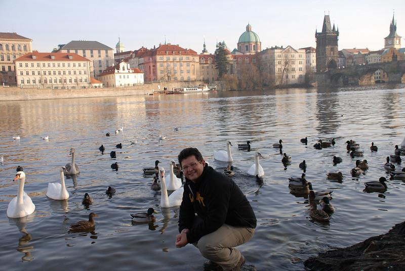 Tony and Prague Swans 11