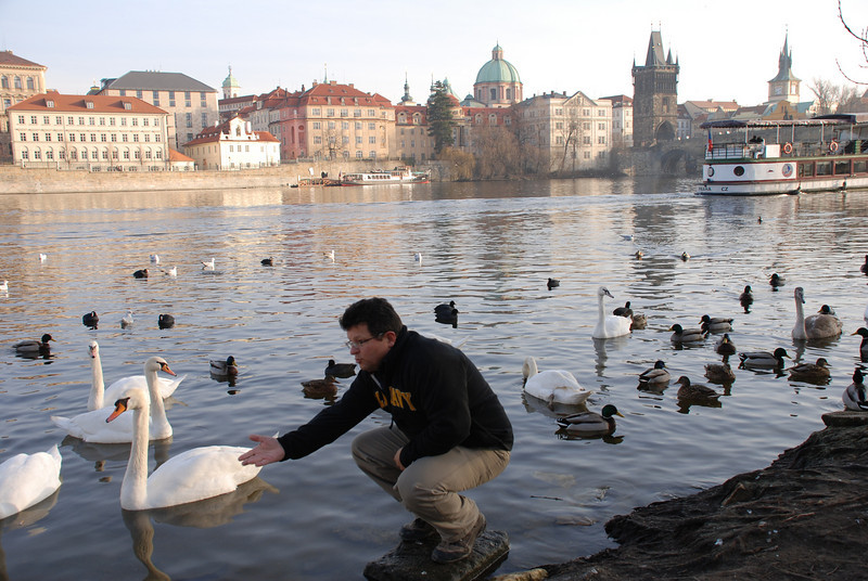 Tony and Prague Swans 1
