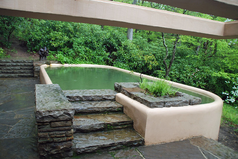 The swimming pool at the guest house uses natural spring water.