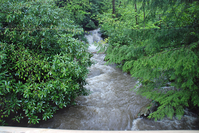 Looking upstream from the bridge at Fallingwater.
