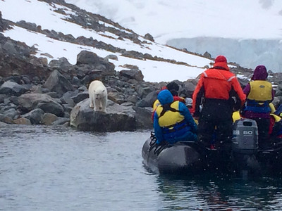 "Spitsbergen July 2014 with Wayne Petersen ""Polar Bear and Zodiac"""