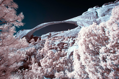 Taken with Infrared Converted Camera