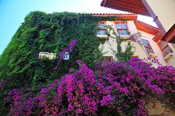 Dette var og eit hotell...dekorert med blomstrer...
