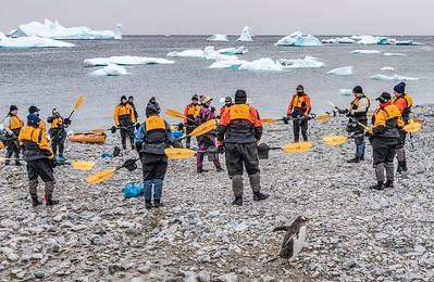 Kayaking_Cuverville Island_Antarctic Peninsula-2