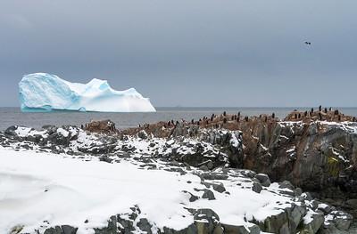 Landscapes_Hydrurga Rocks_Antarctica-1