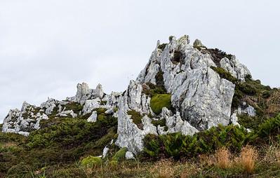 Gypsy Cove_Falkland Islands-3