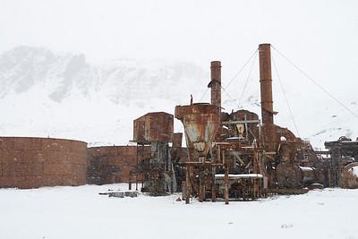 Grytviken_South Georgia-9