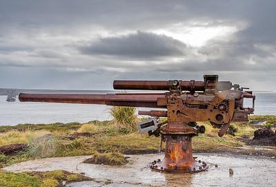 Gypsy Cove_Falkland Islands-4