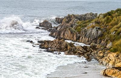 Gypsy Cove_Falkland Islands-1
