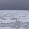 Ice flows