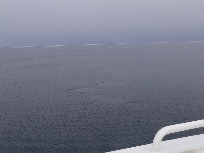 The Minke whale was too quick for the camera but his tracks were still there